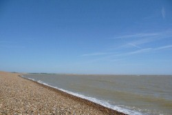 <b>Local Area Photo:</b><br>Shingle Street