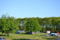 <b>Forest Camping, Suffolk Campsite Photo:</b><br>Campsite facing South East